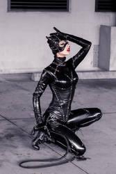 Catwoman XII by MeganCoffey