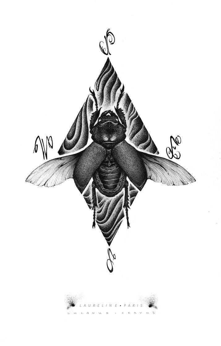 Lucanus cervus by laurelineparis