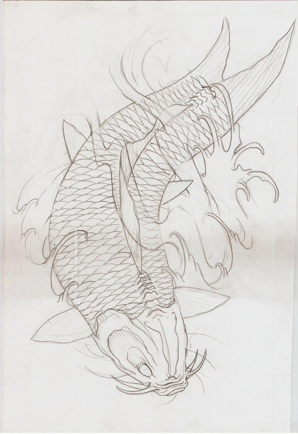 Koi fish vi outline by eltri on deviantart for Koi fish outline