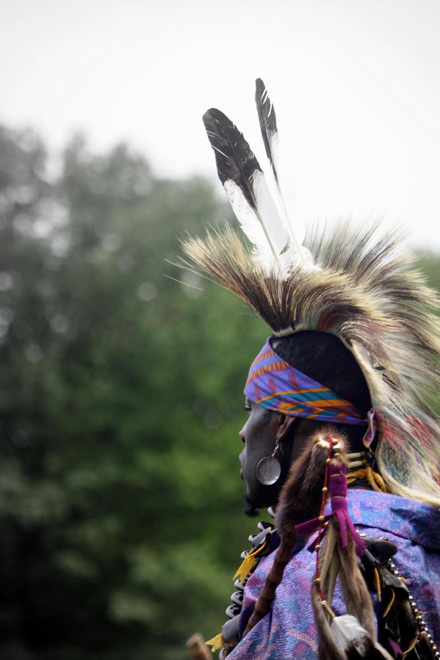 warrior native plain american - photo #26