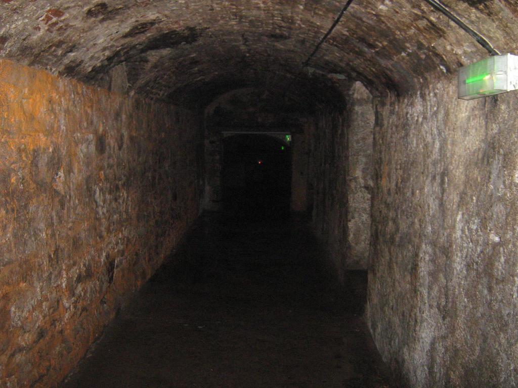 speed dating birmingham the vaults edinburgh