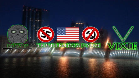 Ninja-X and Vixie Anti-Hate Pro-America Banner