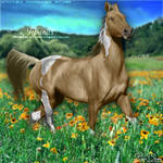 Furious - Palomino Brindle - HEE Collection