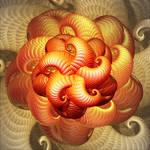 Orange Starfish Medusa by djeaton3162