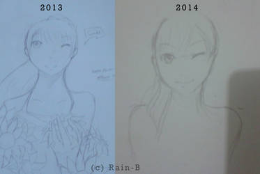 2013 - 2014 by Erwici-Cius