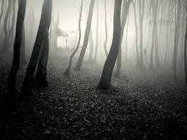 The Fog by Larimar