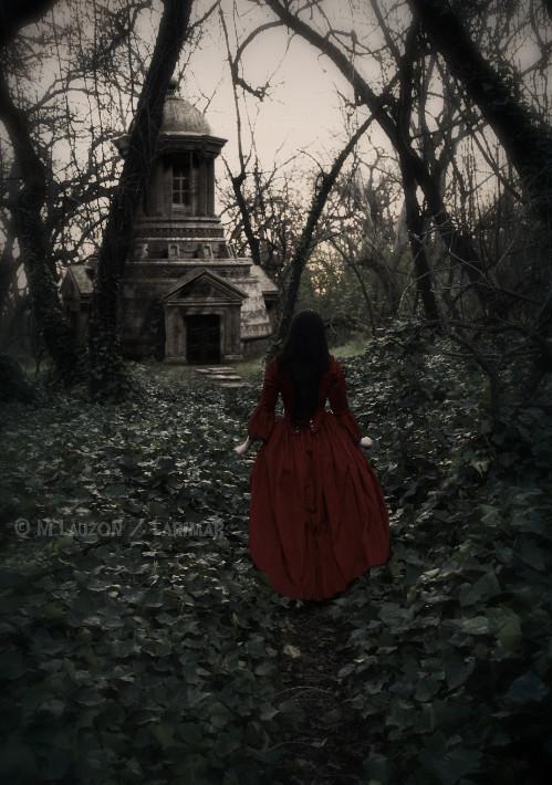 The Secret Place by Larimar
