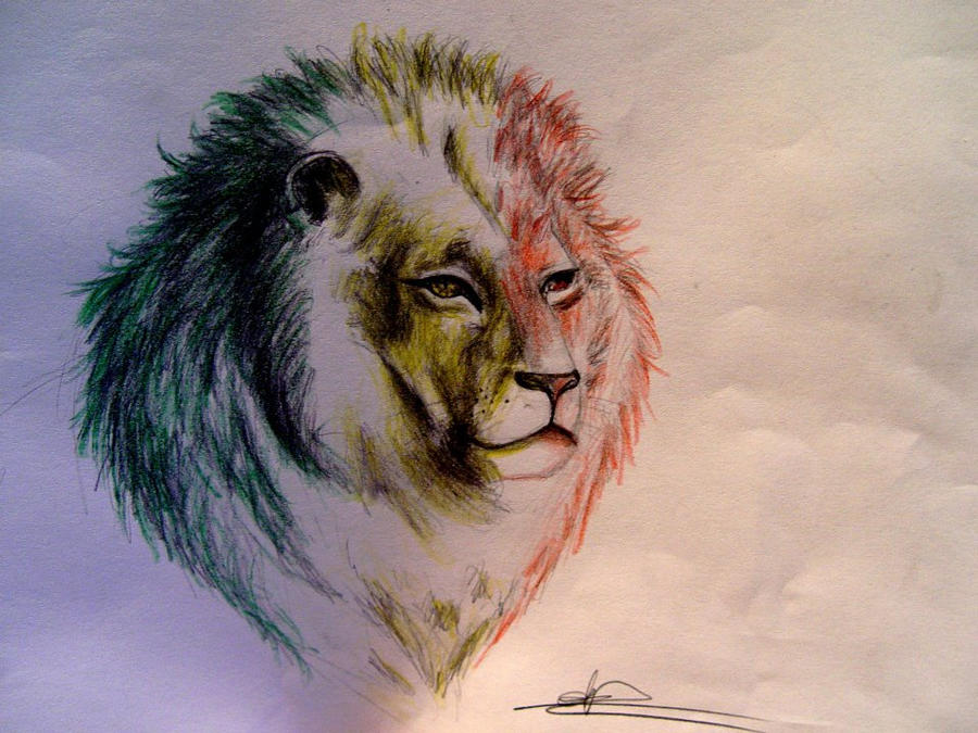 Rasta lion face sketch - photo#9