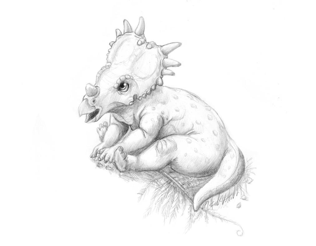 Styracosaurus Baby by LittleFoxStudio