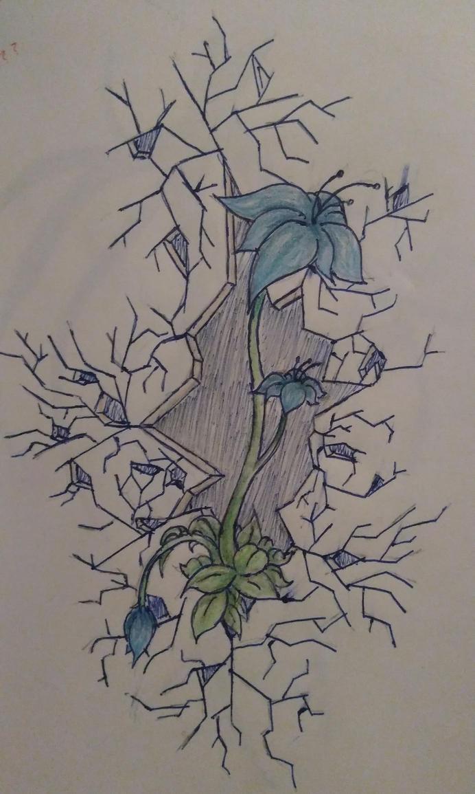 Beautiful Things in Broken Places by xx-StarrySkies-xx