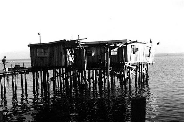 Cedar Key Shanty