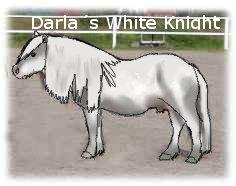 Darlas White Knight by LinnestoftasEternal