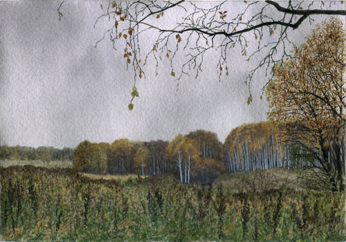 Bleak autumn