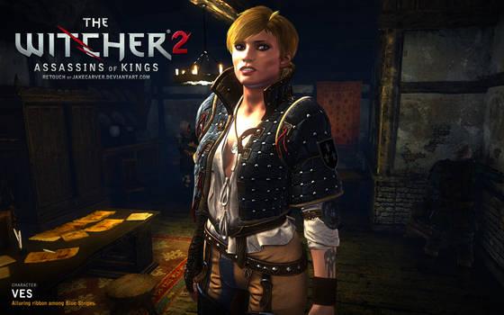 Witcher 2. Ves