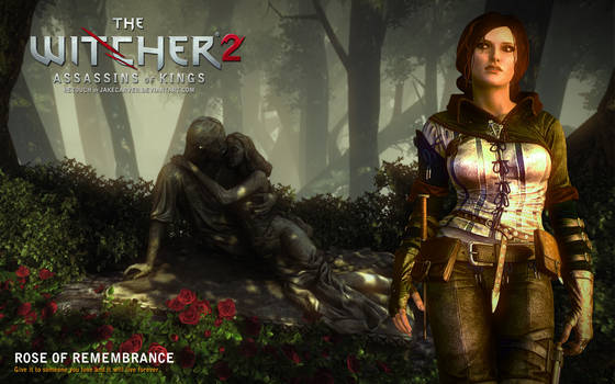 Witcher 2. Rose of Remembrance