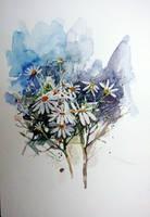 daisy 17 by sunaysenturk