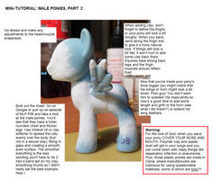Mini-tutorial: Making Male Pony Customs PART 2 by Colour-Splashes