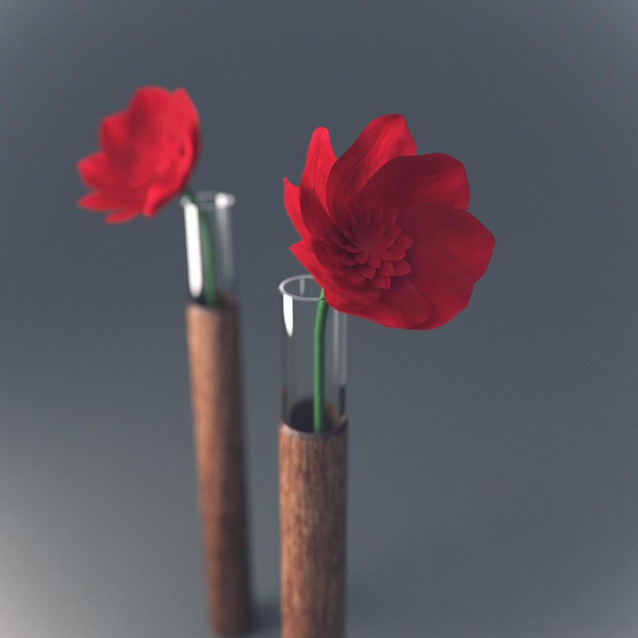Flowers by John-Boyer