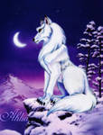 Wolf's form