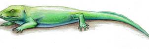 Similisuchus fortipes