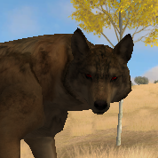 WOLF QUEST - red eyed wolf by Jenny2-point-0