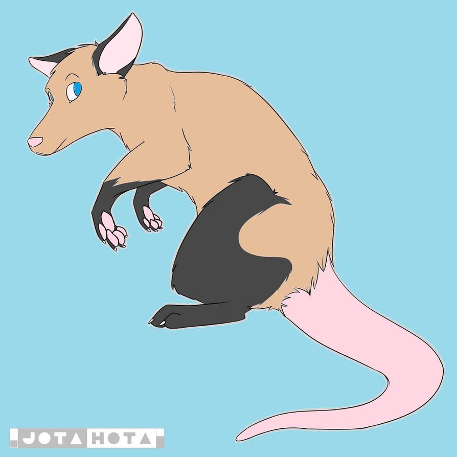 Jimmy the Opossum by Anthonylix09