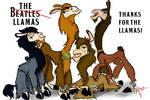 The Llamas by dandy-narusaku