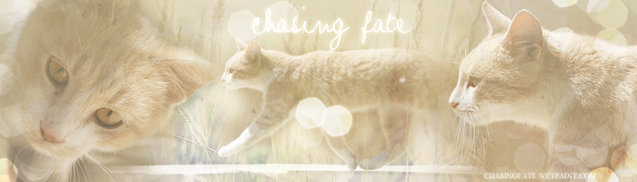chasing fate banner by Poppyscar