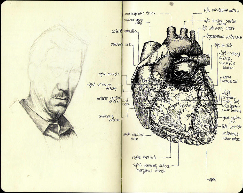 SketchbookNew3 by irem-altan