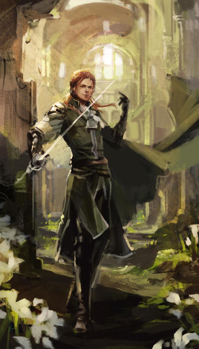 Dragon Age Duelist Build Solo Nightmare