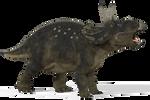 Diceratops_01