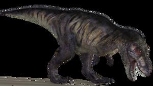 Tyrannosaurus 02