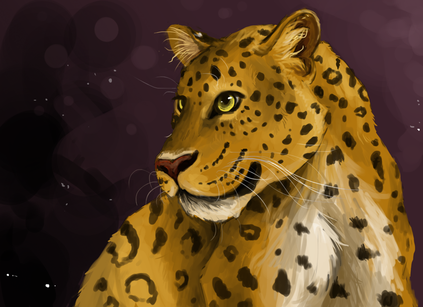 Chinese Leopard by painted-flamingo