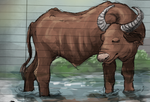 Water Buffalo by painted-flamingo