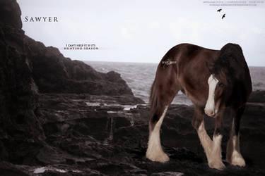 Order - Sawyer by illegal-designs