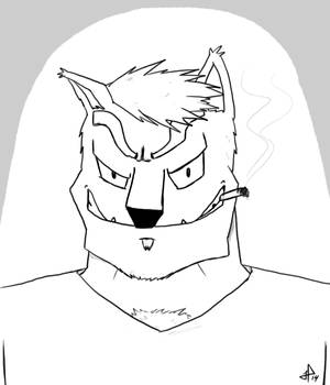 Cat-like sketch