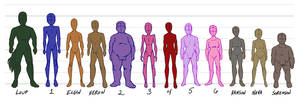Character Body Types by Le-RenardRoux
