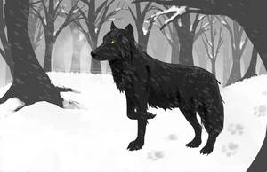 Le Loup Noir by Le-RenardRoux