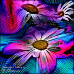 Abstract Daisy 4 by the Compusician