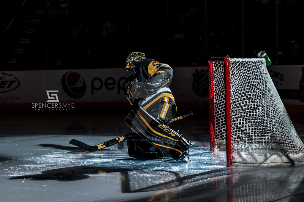 Hamilton Bulldogs Goaltender - (30) Dawson Carty by SpencerSmye