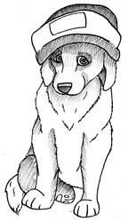 Hat And Puppy by crossed-fingers
