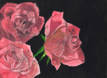 Roses watercolor by crossed-fingers