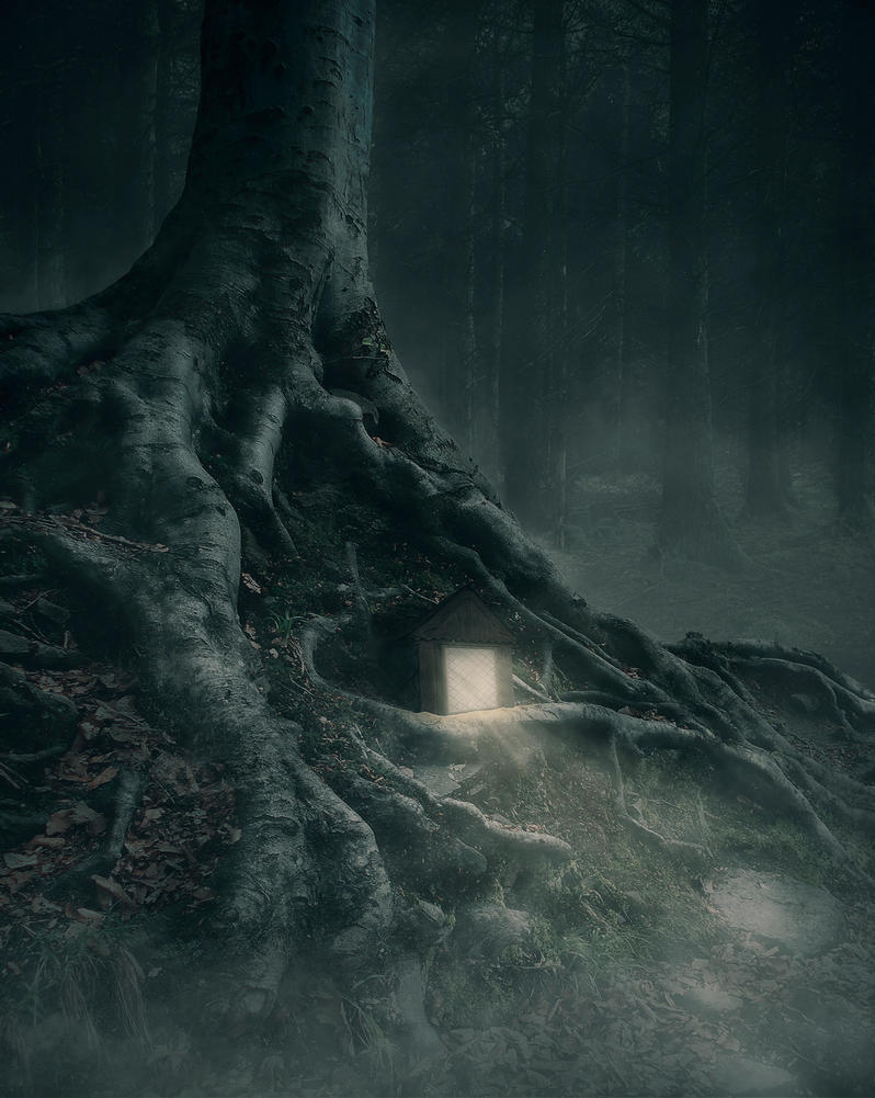 Bosque Oscuro by DarioPMP