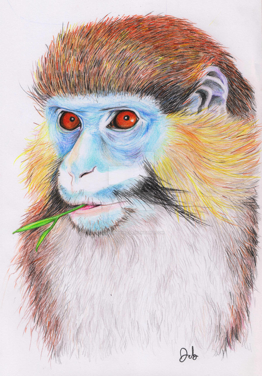 Guenon - sketch from a book by DeBeginning