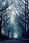 Mystical Trees