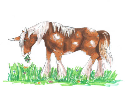 Junicorn: Clydsdale
