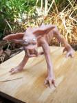 Sand Creeper