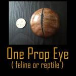 Prop Eye