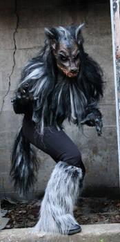 Demented Werewolf