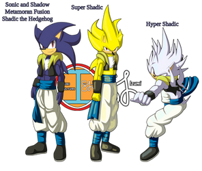 Sonic and Shadow Metamoran Fusion: Shadic
